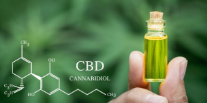 Cannabinoid: Good for You and Your Brain?