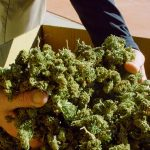 Breaking News: House Republican Bill Would Reschedule Marijuana and De-Schedule CBD