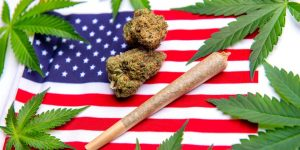 2017 Federal Spending Bill Extends Key Marijuana Protections